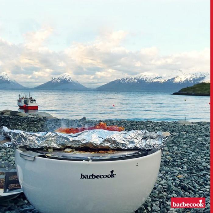 Barbecue de table au charbon Joya Barbecook poisson plage